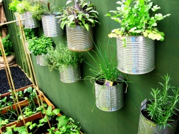 vegetable-garden-ideas-2_rect540