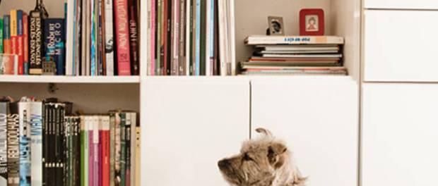 como decorar el apartamento de tus sueños